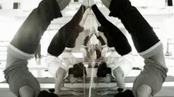 Yogayoga_profile