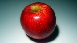 2012-3-21-apple-01-thumb-620xauto-37853_profile