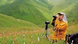 Phenom-tibetan-bunting-tashi-zangpo-2_profile